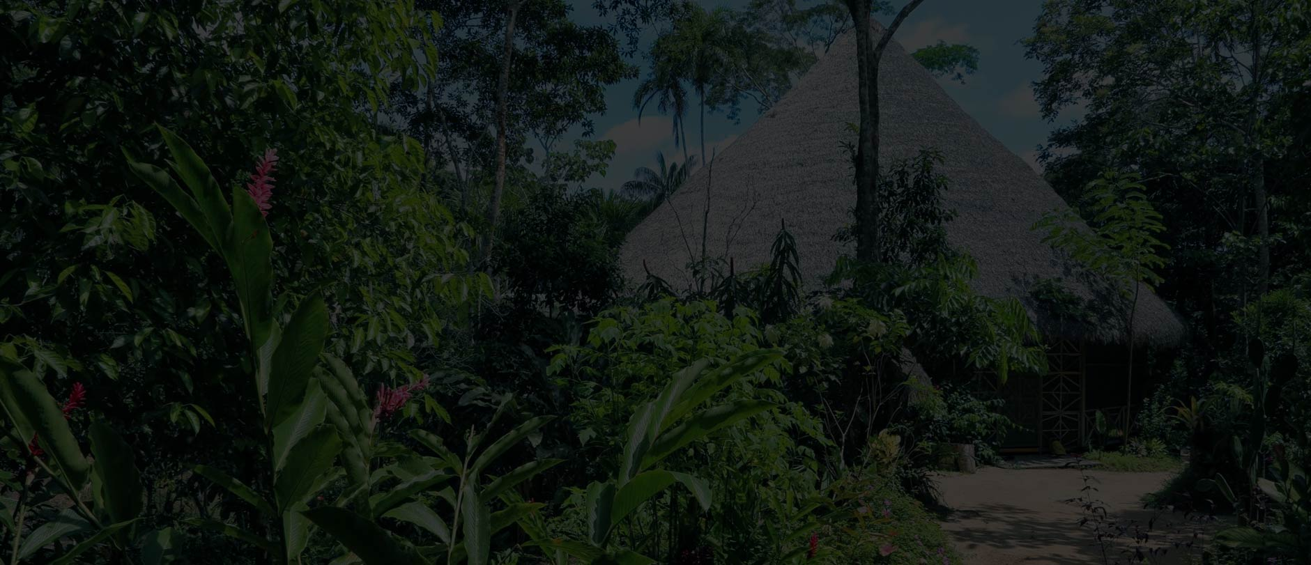 Ayahuasca Retreat Peru, Traditional Retreat Center in the Amazon of Peru