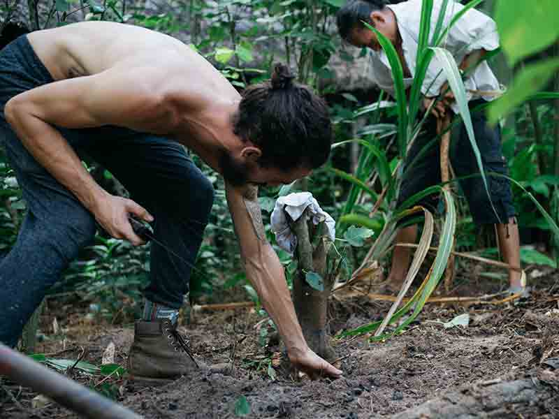 Permaculture_and_Community_26