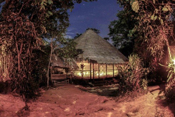 The Tradition of Ayahuasca in the Amazon: Creating the Temple of the Way of Light